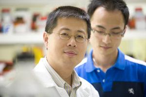 Dong Wang, Ph.D.