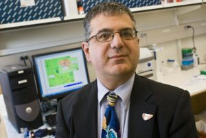 Stephen Bonasera, M.D.