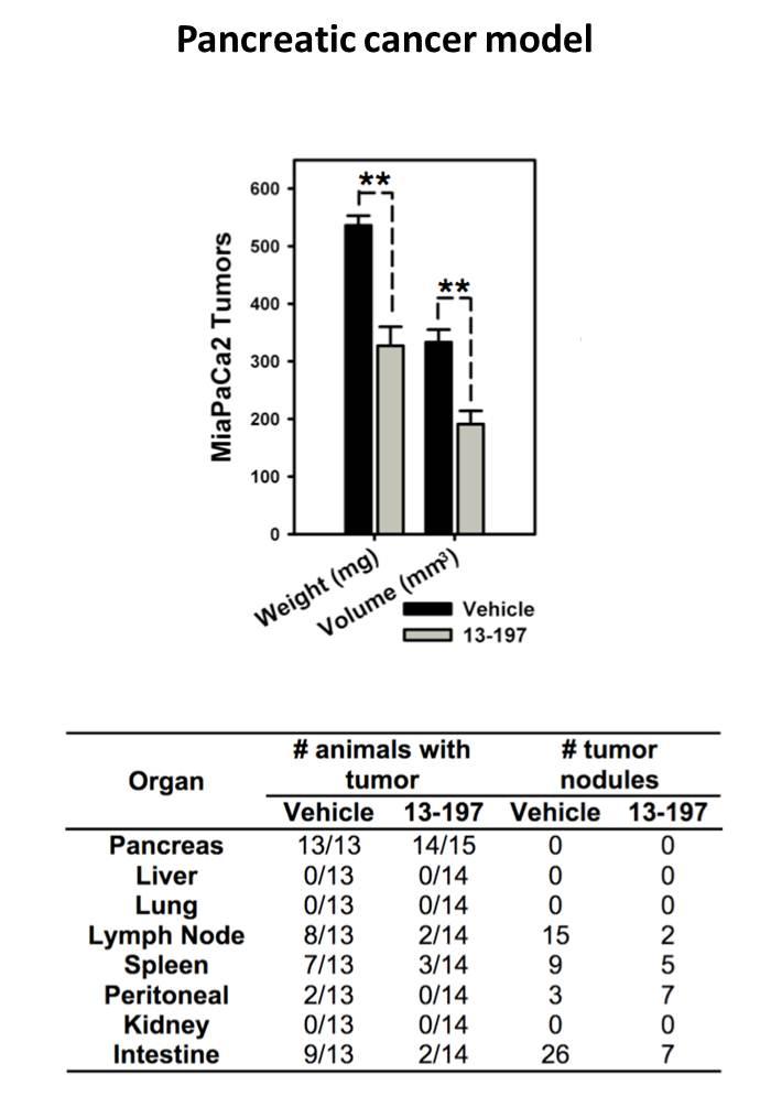 Pancreatic cancer data