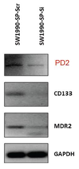 TID236 fig3
